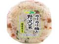 ニューデイズ カリカリ梅と野沢菜おにぎり