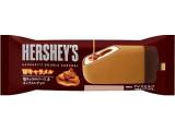HERSHEY'S Wキャラメル 袋93ml