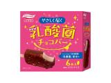 丸永 乳酸菌チョコバー 箱55ml×6