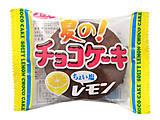 有楽製菓 チョコケーキ ちょい塩レモン 袋2枚