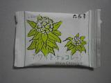 六花亭 ホワイトチョコレート 袋20g