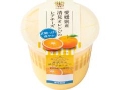 トーラク カップマルシェ 愛媛県産清見オレンジのレアチーズ