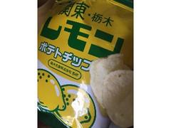 山芳製菓 ポテトチップス 関東・栃木レモン 袋50g