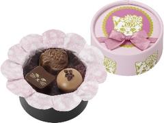 メリーチョコレートカムパニー Ma Petite Minette Petit Coffret Rose 箱3個