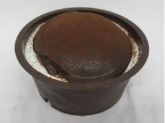 プレミアムセレクト チョコラータスフレプリン 1個