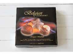 Belgian HARVEST チョコレートシーシェル 箱250g