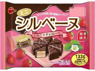 ミニシルベーヌ いちご×チョコレート