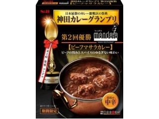 神田カレーグランプリ マンダラ ビーフマサラカレー お店の中辛